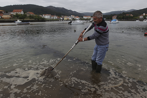 Demostración de cómo se realiza el marisqueo a pie, en una playa de Esteiro (Muros).