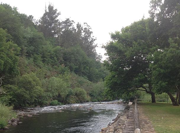 Río Deza, a su paso por el Área Recreativa de A Carixa, en Merza (Vila de Cruces).