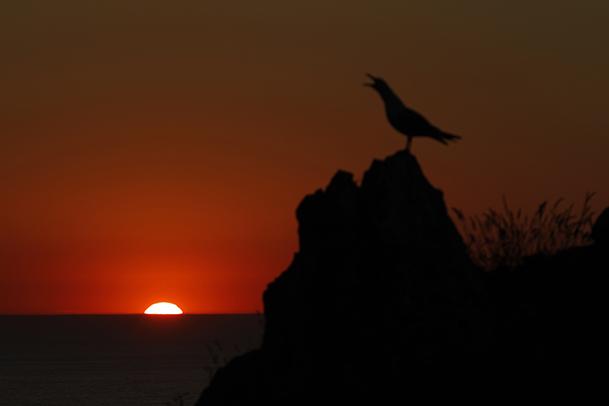 Puesta de sol en las inmediaciones del alto de la Piedra de la Campana.