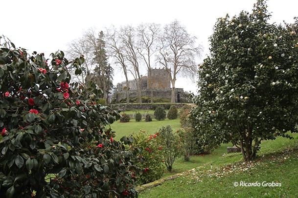 Camelias del parque botánico del castillo de Soutomaior (Pontevedra), declarado Jardín de Excelencia Internacional.