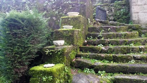 Escaleras cubiertas de musgo.