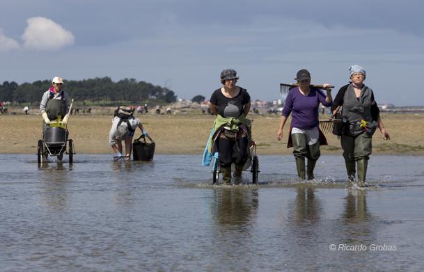 Mariscadoras en la playa de O Sarrido.