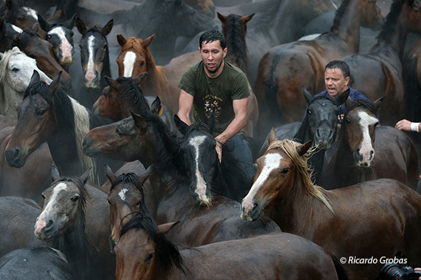 """Un """"aloitador"""" cabalga a lomos de un caballo."""
