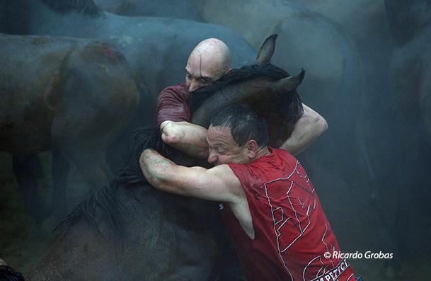 Dos hombres inmovilizan a un caballo sujetándole la cabeza por ambos lados.
