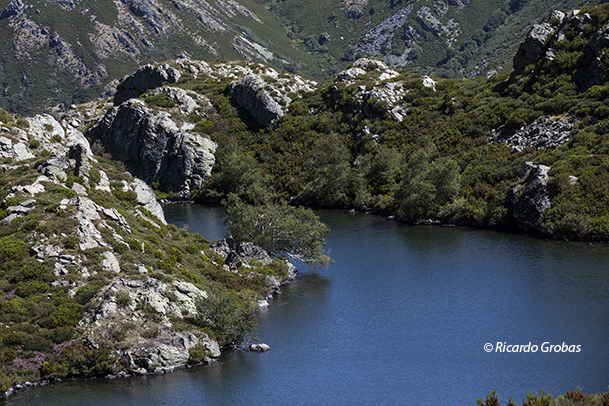 Lugar por el que desagua la laguna de A Serpe.