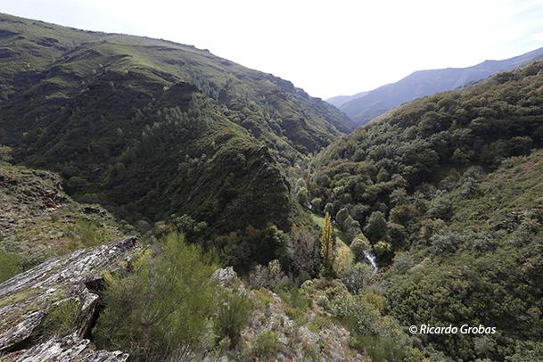 Montes de O Courel.