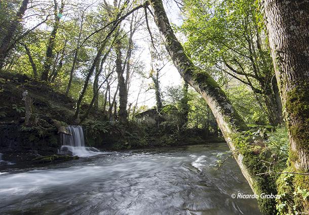 Cascada de Lóuzara y molino de