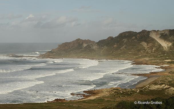 Ensenada de O Trece y duna rampante del Monte Blanco.