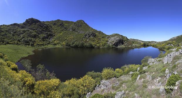 Laguna glaciar de Ocelo.