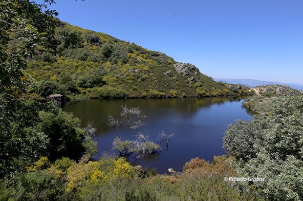 Laguna de Laceira.