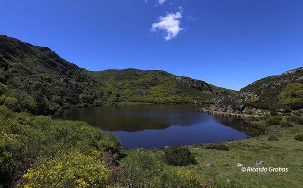 Laguna de Carrizais